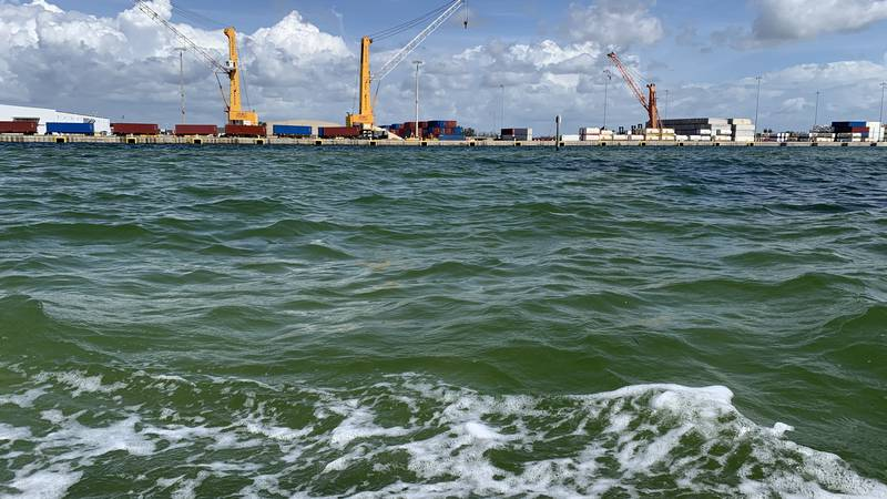 A reported and regulated wastewater spill is going into the Tampa Bay from Piney Point through...