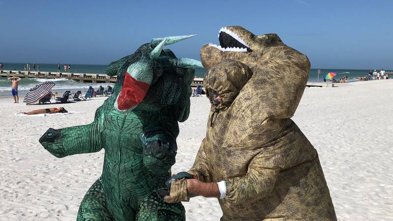 The 13th annual Shamrock Shiver Charity Plunge at Bradenton Beach was held on Friday.