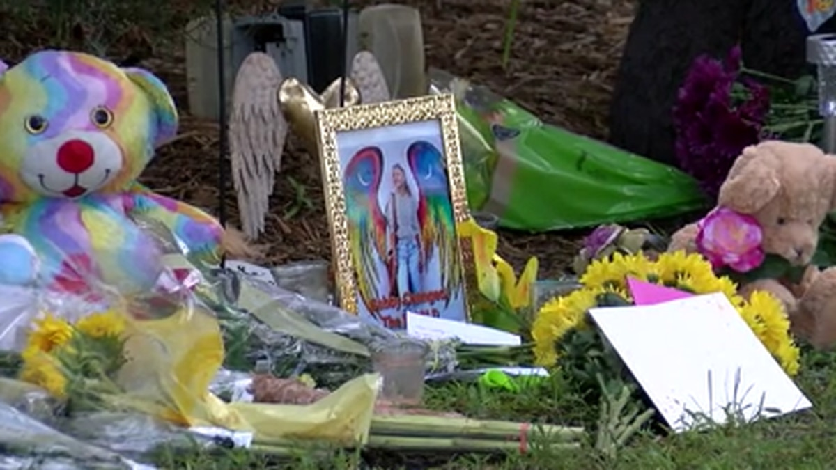 A butterfly release and vigil for Gabby will happen Saturday night in North Port City Hall.