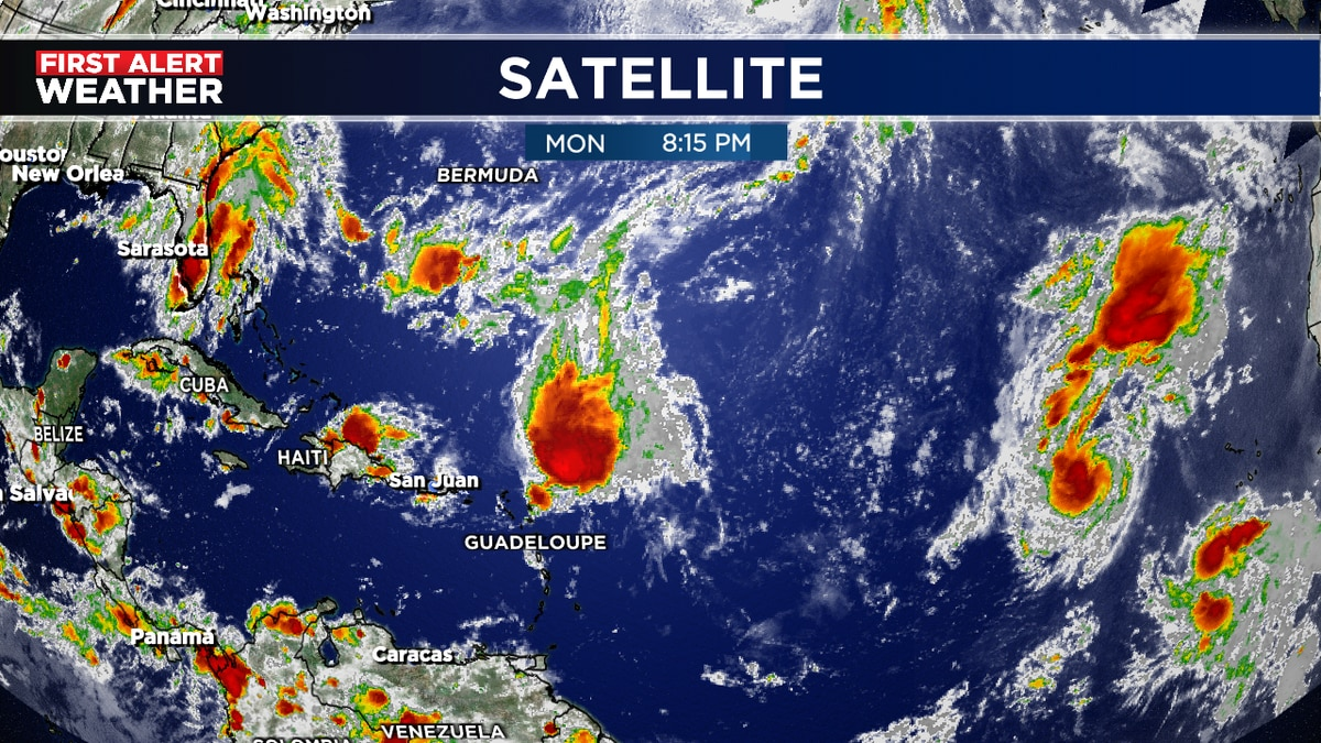 Watching Peter, Rose and Invest 98L