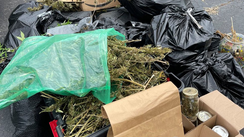 Investigators recovered over 20 pounds of marijuana and 40 plants from the property.