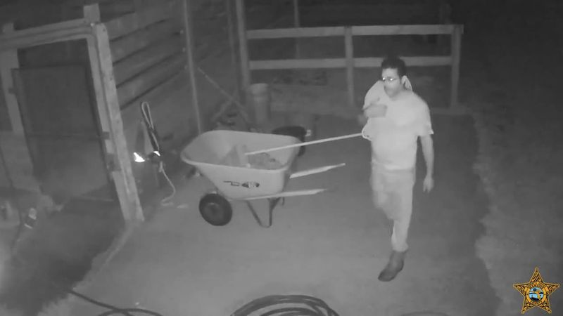 Deputies have now obtained surveillance video from the property